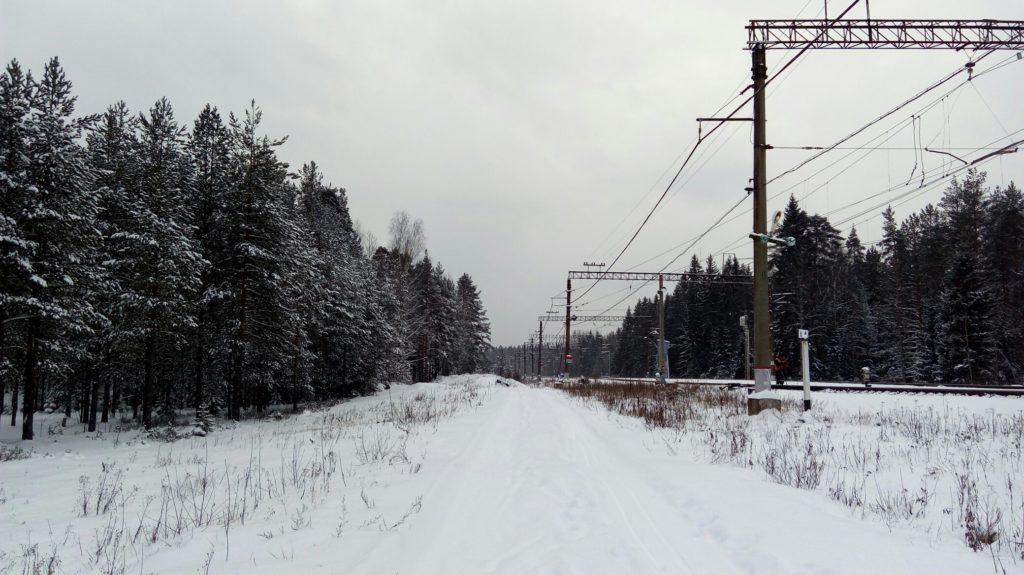 Конная прогулка в районе Орехово